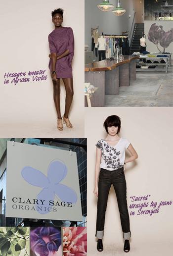 Clary-sage-edun-event
